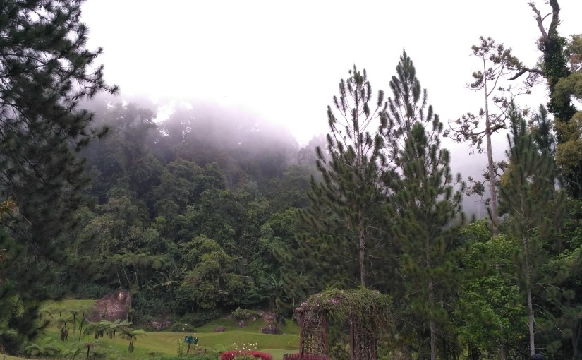 Borneo Highland
